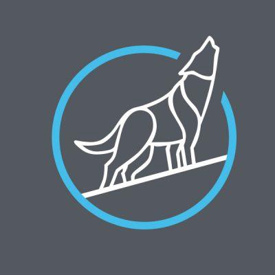 Algo - Momentum Wolf Trader Copier Service