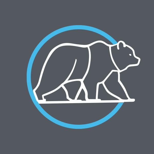 The Bear Trader